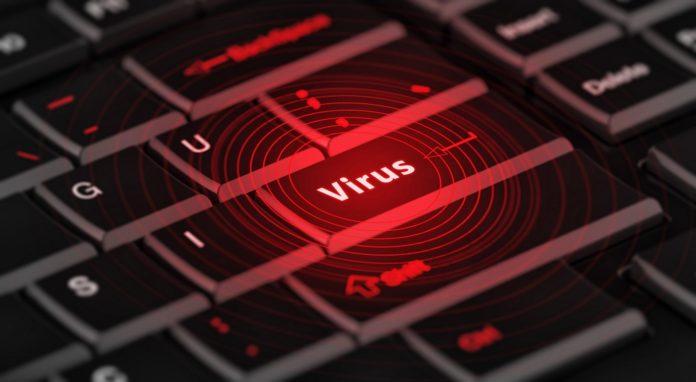 Virus, ilustrační foto
